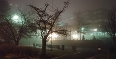 Original foggy. (thnewblack) Tags: lg v30 android smartphone cameraphone outdoors lowlight rainy foggy moody britishcolumbia cityhall 16mp f16