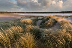 The dunes at Holkham, Norfolk (Justin Minns) Tags: website sunset norfolk holkham