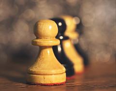 We are not mere pawns (Through Serena's Lens) Tags: hmm macromondays gamesorgamepieces chess pawns bokeh dof pov macro indoor inarow stilllife canoneos6dmarkii 7dwf