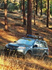 2012 Subaru Forester (donaldgruener) Tags: sh forester subaru forest offroad southernoregon