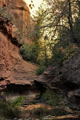 IMG_5759 (schnabelsayegh) Tags: redrock sedona arizona hiking views landscape photography rivers mountains trails leafs fall october screensavers