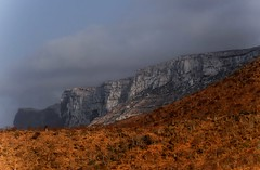 Socotra Island (Rod Waddington) Tags: middle east yemen yemeni socotra island mountains bottle trees escarpment mist landscape outdoor