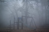 Swings in the fog (Adam With a Camera) Tags: swings trees forest play climbingframe fog eerie mist budapest hungary europe explore adventure scary