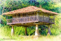 Horreo (alanchanflor) Tags: horreo asturias españa color canon julio verde textura