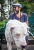 IMG_0091 (oemilio16) Tags: perro dog doggy perros perrito mexico canon calle cdmx ladrar ladrando puppy puppies mark2 5dm2 5dmii yongnuo df mascotas