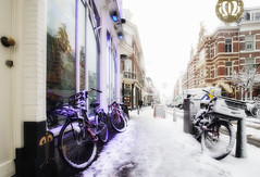 Purple & White / winter 2017 (zilverbat.) Tags: denhaag winter winterweer winterwonderland wintertime zilverbat centrum thehague hofstad scenery sneeuw snow canon prinsestraat thenetherlands timelife town city innercity image urbanvibes urban netherlands dutch dutchholland nederland winkelstraat shopping visit tripadvisor buldog wiet drugs cannabis bicycle fietsen fiets transportfiets gevelrij buildings bar