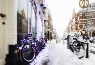 Purple & White / winter 2017