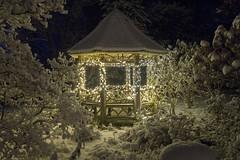 Winter Gazebo (johngoucher) Tags: approved maryland annearundelcounty londontown historiclondontown illuminatedlondontown holidays christmas merrychristmas deckthehalls nightscape lights outdoors optoutside snow snowy zeiss zeisslens night winter wintry