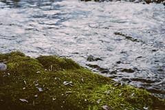 Lee Martinez (camillian133) Tags: northerncolorado leemartinezpark co colorado ftcollins fortcollins