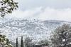Neige en Provence (YackNonch) Tags: peypin france lieu provençal provence provencealpescôtedazur fr