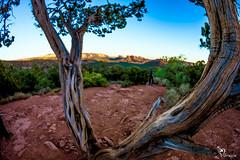 Red Rock @ Sedona, Arizona (greslephotography) Tags: redrock sedona arizona photography greslephotography