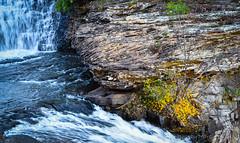 Fall Foliage at Desoto State Park at Fort Payne, AL (Marcie Braden) Tags: desotostatepark desotofalls fortpayneal boathouses