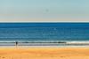 Take a Walk (Nicholas Erwin) Tags: hamptonbeach beach seagulls gulls girl woman candid ocean water walking sand contrast colorful gold travel nikon d610 nikkor 70200f4vr hampton newhampshire nh unitedstatesofamerica usa fav10 fav25