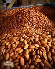 0071BAR Almond17 by BAYAREA ROADSTERS