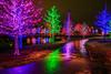 20141221vitruvianpark_020-2.jpg (Dr. Hilton Goldreich) Tags: xmas vitruvianpark christmaslights lights