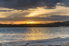 Shimmering Sunrise Waterscape (Merrillie) Tags: daybreak woywoy color shimmering overcasst cloudy water coast dawn beauty landscape weather newsouthwales clouds bay nsw brisbanewater light scenery beautiful scene nature scenic coastal sky waterscape view centralcoast sunrise australia