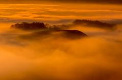 Islands in the Mist (Peter Quinn1) Tags: islandsinthemist mist inversion temperatureinversion goldenhour woodland peakdistrict derbyshire november autumn cloud evening