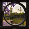 Plaza Rubén Darío, Buenos Aires (maxem fotos) Tags: buenosaires jacaranda farol marco plaza parque