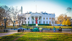 2017.12.01 Red Ribbon at the White House, World AIDS Day, Washington, DC USA 1114