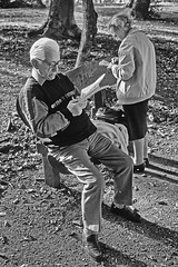 Budapest (cruciverbistes / cruciverbalists) 2001 (Joseff_K) Tags: budapest hongrie hungary foret bois forest leicam6 leica m6 film kodak slide diapositive cruciverbiste crosswordfan