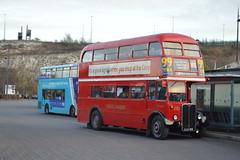 RT3251 LLU610 (PD3.) Tags: aec regent rt3251 rt 3251 llu610 llu 610 ensign ensignbus purfleet essex lakeside upminster bluewater gravesend grays bus buses tilbury vintage heritage