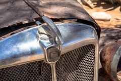 Morris Eight, detial (Roberto Bendini) Tags: canon vehicle old british eight morris car wreck desert station gas solitaire namibia afrique africa