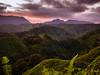 Sunset Behind (lunkerbuster808) Tags: kauai hawaii lumix gx85 25mm island jungle green winter sunset