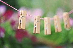 Hanging around, doing nothing ;-) (eleni m) Tags: clothespins rope cord macro outdoor dof hanging wooden mini tiny violets flowers plant pink purple green bokeh
