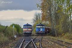 751.219-7 & 751.316-1_-_30.10.2017-_-SOKV ČESKÉ BUDĚJOVICE_trať číslo 194 vlečka v km 23,682 - Zlatá Koruna (Pn 52283) by Bardotka77 - Mezi tím, co ze začátku vlaku odstoupila Zamračená 751.316-1 z důvodu nedostatečné dlouhé koleje na vlečce, druhý Mračoun 751.219-7 pomáhá Elektronikům 743.006-9 + 743.008-5 s první várkou uhlí na vlečku energobloku Domoradice. Tato vlečka není nikterak letitá. Existuje od roku 1950 (09.08.), původně pro továrnu na provaznické zboží KONOPA. Z hlavní tratě odbočuje v km 23,895 [uváděno před rekonstrukcí tratě 194]. Za ta léta změnila několikrát své jméno Jiholen, Juta, Jitka (což nebyla vlečka k nějaké ženě, ale zkratka pro Jihočeské tkalcovny) a další. Největší provoz na vlečce existoval v souvislosti s energoblokem Domoradice (vlastní lokomotiva T448.0868). Po roce 1989 byla vlečka opuštěna a posledním vozidlem, které vlečku v roce 1998 opustilo, byl Hurvínek M 131.1243. Vlečka byla například v roce 2006 v majetku firmy Schwan - STABILO ČR, s.r.o. už v podstatě zrušena bez úředního povolení a vypracovaného přípojového provozního řádu. První jízda na vlečku po jejím znovuotevření pro Energoblok Domoradice se uskutečnila v pátek 22.11.2013 dopoledne.