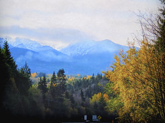 A Time for Thanksgiving (Colormaniac too - Many thanks for your visits!) Tags: pacificnorthwest olympicmountains autumn fall autumncolor colorful landscape mountains clouds cloudscape sky trees washingtonstate olympicpeninsula topaztextureeffects topazimpression