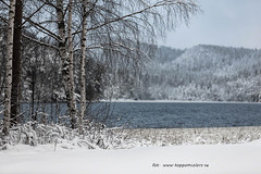 20171129001119 (koppomcolors) Tags: koppomcolors winter vinter snö snow lake water värmland varmland sweden sverige scandinavia