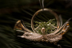 Let the jolly season begin! HMM! (suzanne~) Tags: christmas decoration horn bow ribbon pearl silver pine macro composerpro lensbaby sweet35 branch advent macromondays buttonsandbows