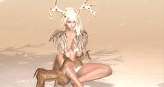 reindeer (amylee diabolito1) Tags: birth prtty tcf biteclaw pr