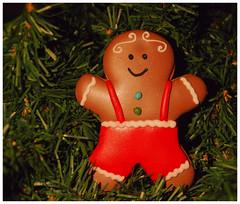 "Smile on Saturday -  ""Xmas deco"" - DSC_2364 (FMAG) Tags: smileonsaturday xmasdeco gingerbread"