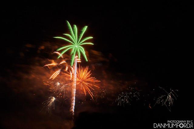 Palm Tree Firework? - Danson Park Fireworks 2017