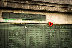 Day 315/366 in remembrance (Eiona R. [Busy over the Weekend]) Tags: brynmill wales unitedkingdom gb swansea swanseabay wfc astarterforten remembranceday
