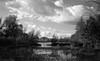 Land submerged (Rosenthal Photography) Tags: asa125 landschaft bnw schwarzweiss 20171002 35mm hochwasser ilfordhp4 epsonv800 ff135 offensen städte bw flus olympus35rd analog oste dörfer siedlungen landscape river flood trees water autumn nature blackandwhite olympus olympus35 40mm f17 35rd zuiko ilford hp4 orangefilter orange filter epson v800 ilfordfp4 fp4 fp4plus
