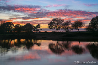 Sunset at Setley Pond - New Forest