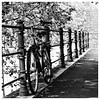 Sophisticated Bike (Thomas Listl) Tags: thomaslistl blackandwhite noiretblanc biancoenegro film analogue minoltax700 square bike bicycle fence hff tree lines push ilford hp5 hp51600