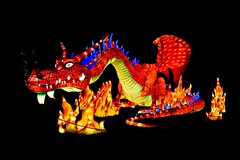 Dragon (Nige H (Thanks for 11m views)) Tags: longleat festivaloflight longleatfestivaloflight wiltshire england fairytales