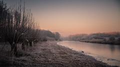 Winter scene (Alex Verweij) Tags: krommewetering almere kasteel castle winter 2017 ice ijs col koud verweij alexverweij canon 5d markiii knotwilg knotwilgen wetering sunset almerestad zonsopkomst