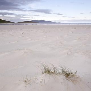 Luskentyre beach IV