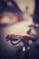 ride or die (christian mu) Tags: bike bikesaddle fahrrad fahrradsattel fahrradhauptstadt fahrradstadt brooks germany münster muenster christianmu distagon3514 distagon 35mm 3514 zeiss sonya7ii sony