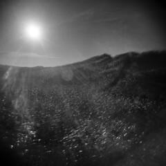Dune #2 (LowerDarnley) Tags: holga pei princeedwardisland seaview dunes dunegrass sun flare atlanticcanada maritimes