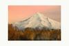Majestic (Krasne oci) Tags: landscape mountain volcano snow oregon mthood fall autumn podzim hory sopka color photographicart artphoto evabartos