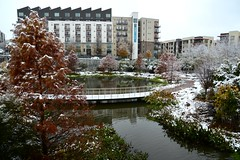 snow 32 (Krasivaya Liza) Tags: snow winter snowy wintry snowing december atlanta atl ga georgia georgian o4w oldfourthward fourth ward neighborhood pond park autumn fall leaves season seasons trees flower flowers nature colors earth tones flowery