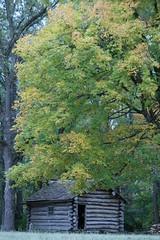 IMG_5466 (davekremitzki) Tags: new salem state park illinois