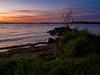 One Lonely Tree (melissaenderle) Tags: autumn mendota lake wisconsin sunset