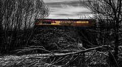 A Shed in the woods (Peter Leigh50) Tags: ketton cement train railway river sence class 66 leicestershire fuji xt10 fujifilm