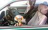 Seen on a street (Ivan Costa) Tags: street dog rua cao cachorro inside dentro carro car mini small pequeno